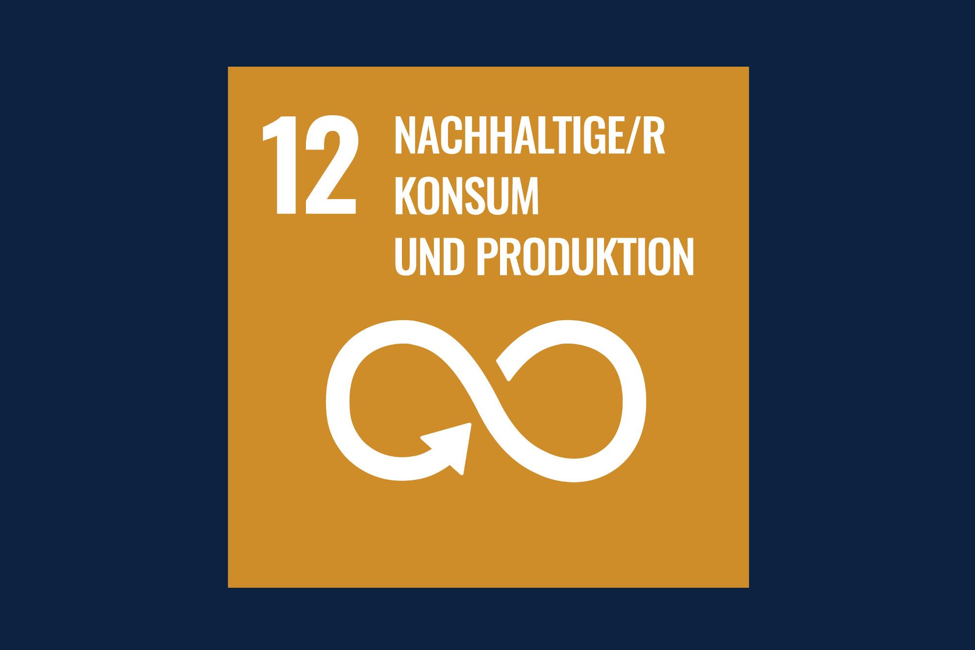 Icon für das Ziel 12 – Nachhaltiger Konsum und Produktion