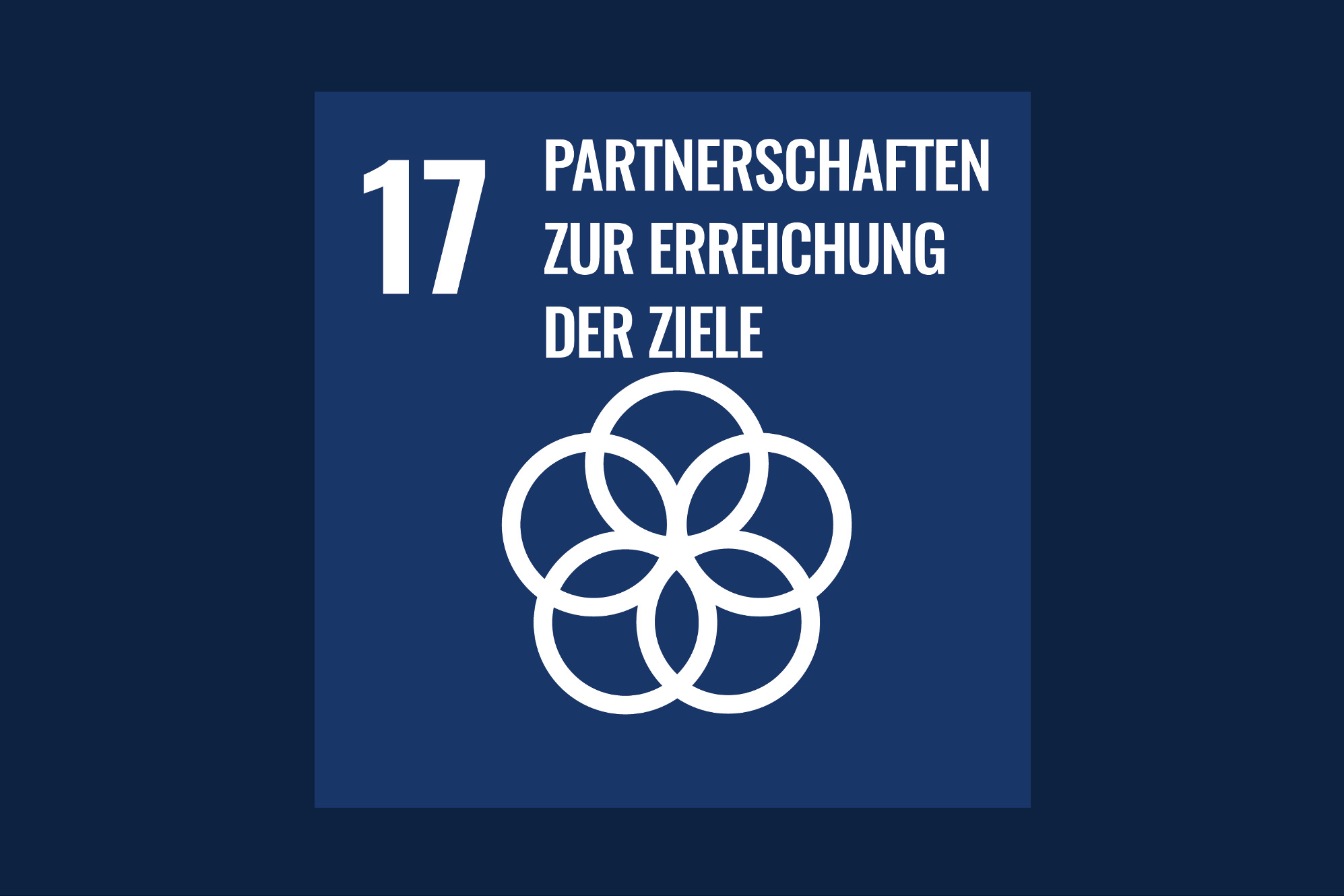 Icon für das Ziel 17 – Partnerschaften zur Erreichung der Ziele